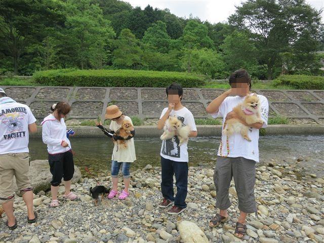 f:id:yasukazu01:20130719221715j:image