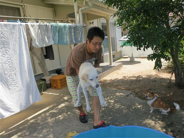 f:id:yasukazu01:20130720212604j:image