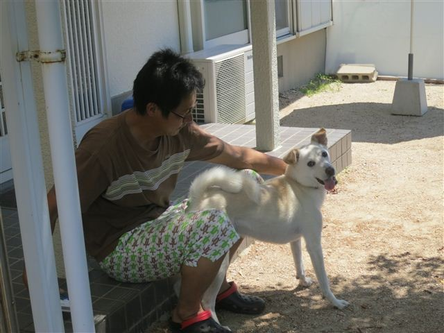 f:id:yasukazu01:20130721221830j:image