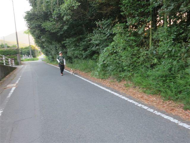 f:id:yasukazu01:20130726221031j:image