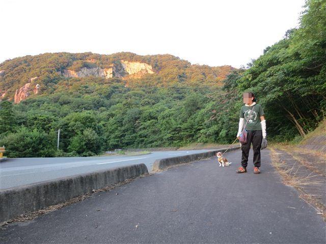 f:id:yasukazu01:20130726222247j:image