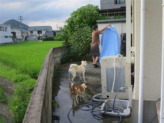 f:id:yasukazu01:20130730202231j:image