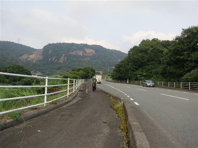 f:id:yasukazu01:20130731220628j:image