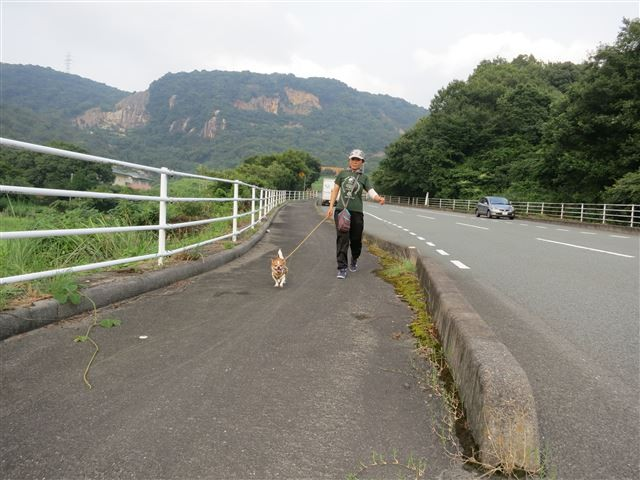f:id:yasukazu01:20130731220738j:image