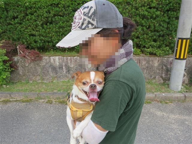 f:id:yasukazu01:20130731221049j:image