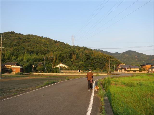 f:id:yasukazu01:20130806221754j:image