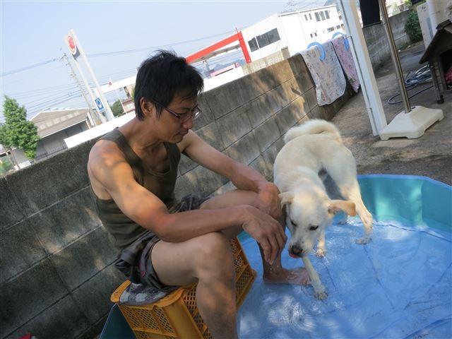 f:id:yasukazu01:20130811211925j:image