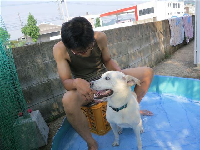 f:id:yasukazu01:20130811212256j:image