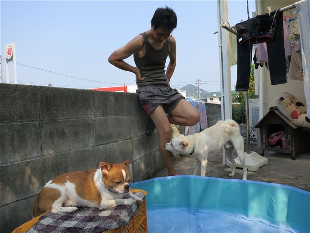 f:id:yasukazu01:20130812213443j:image