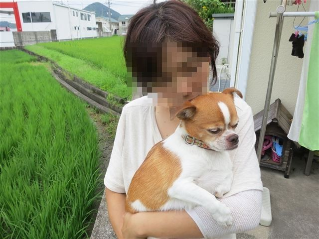 f:id:yasukazu01:20130814223904j:image
