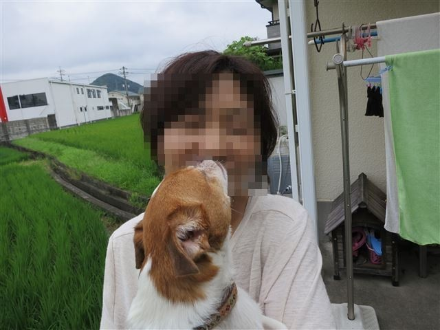 f:id:yasukazu01:20130814224020j:image
