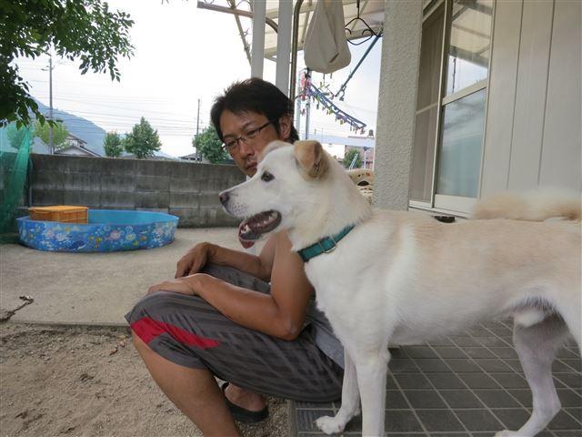 f:id:yasukazu01:20130816204543j:image