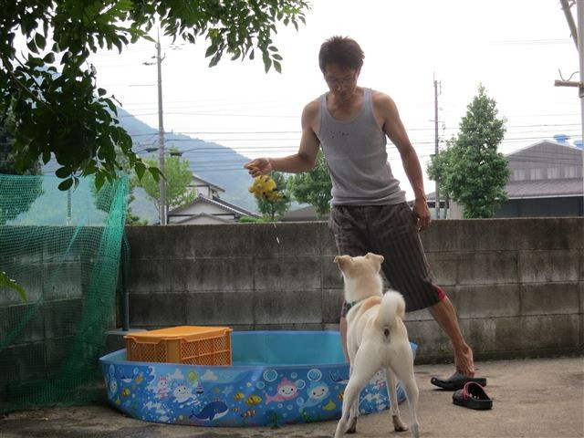 f:id:yasukazu01:20130817213118j:image