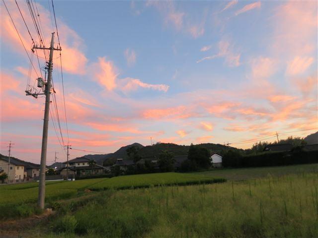 f:id:yasukazu01:20130820211810j:image