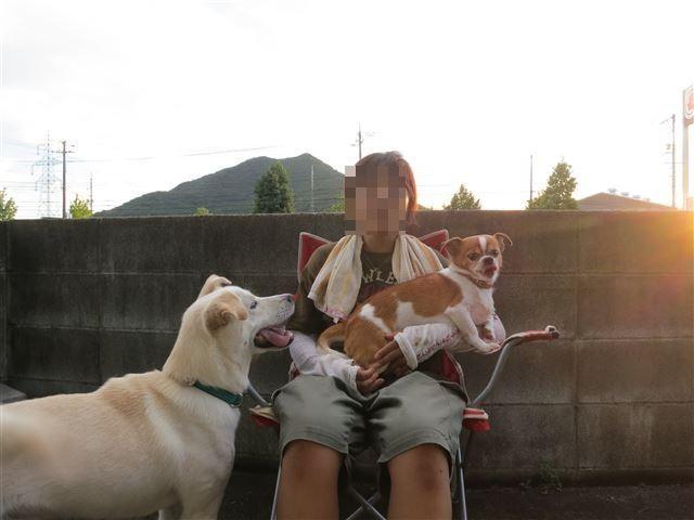 f:id:yasukazu01:20130828203155j:image