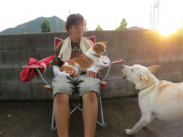f:id:yasukazu01:20130828203648j:image