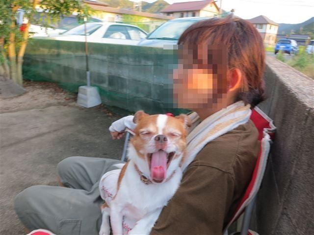 f:id:yasukazu01:20130828203906j:image