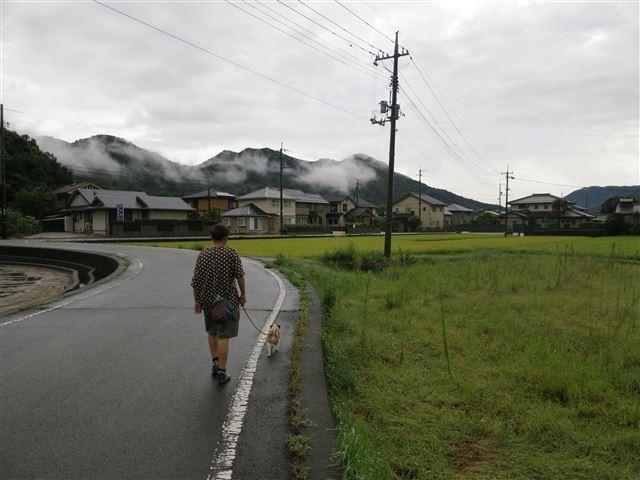 f:id:yasukazu01:20130830200611j:image
