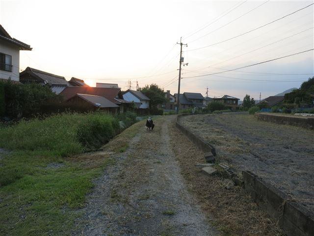 f:id:yasukazu01:20130913222305j:image