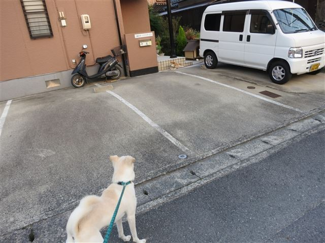 f:id:yasukazu01:20130913222514j:image