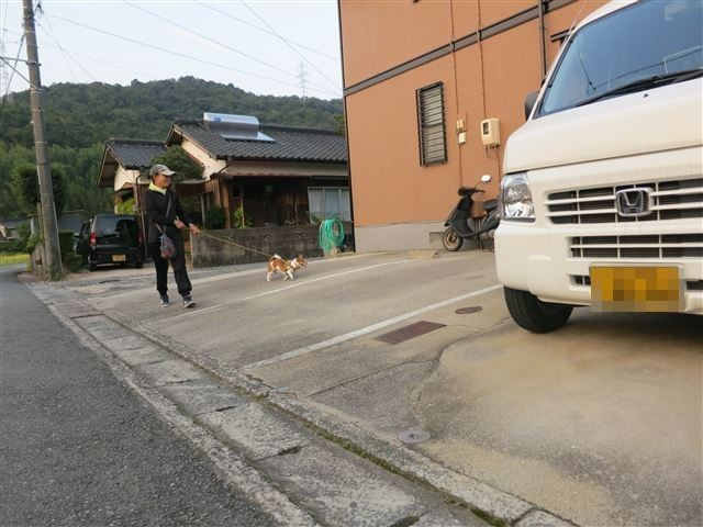 f:id:yasukazu01:20130913222931j:image
