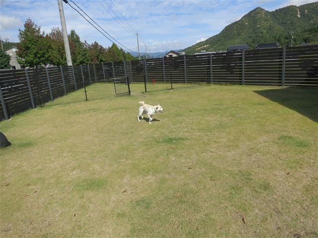 f:id:yasukazu01:20131002205954j:image