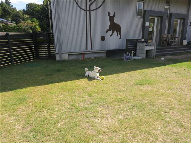 f:id:yasukazu01:20131002210521j:image