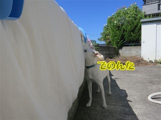 f:id:yasukazu01:20131004222358j:image