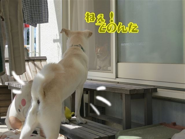 f:id:yasukazu01:20131005222752j:image