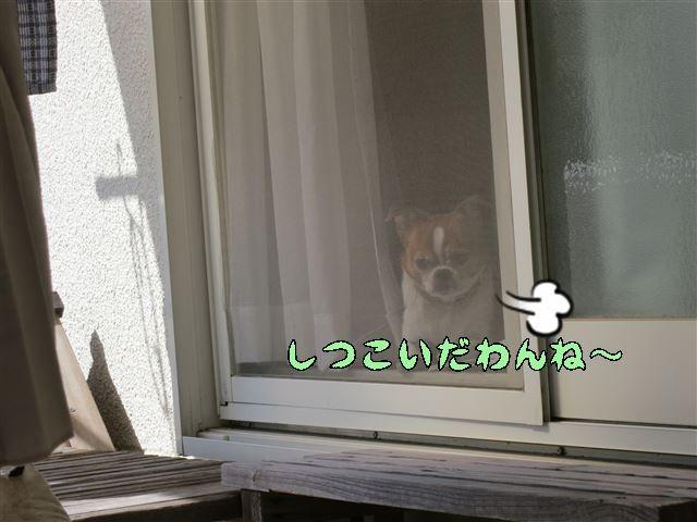 f:id:yasukazu01:20131005222853j:image