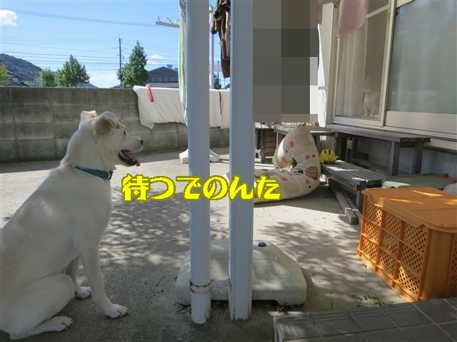 f:id:yasukazu01:20131005223016j:image