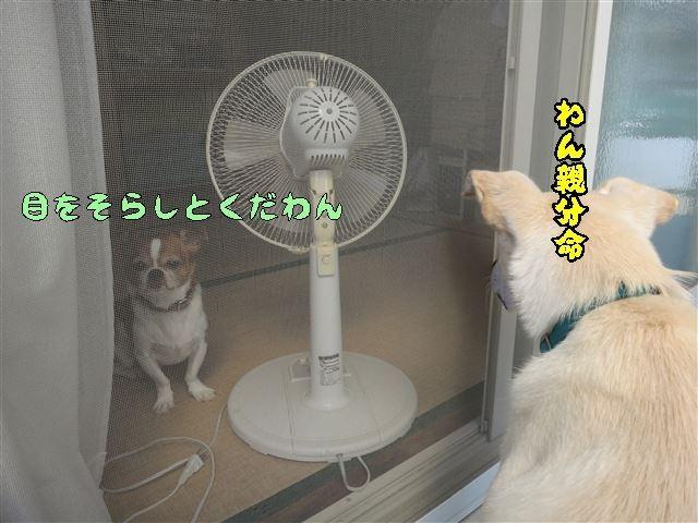 f:id:yasukazu01:20131005223258j:image