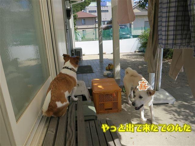 f:id:yasukazu01:20131005223456j:image