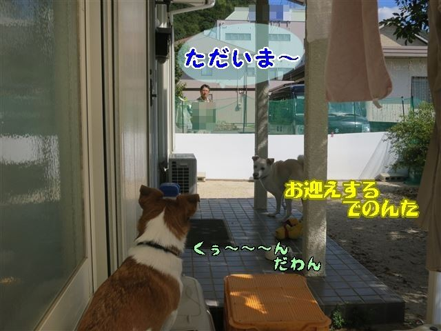 f:id:yasukazu01:20131005223814j:image