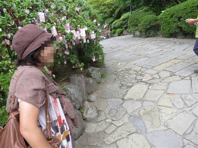 f:id:yasukazu01:20131012192612j:image