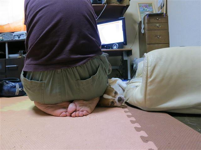 f:id:yasukazu01:20131017214808j:image