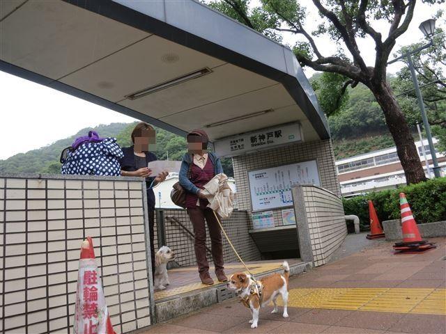 f:id:yasukazu01:20131020204958j:image
