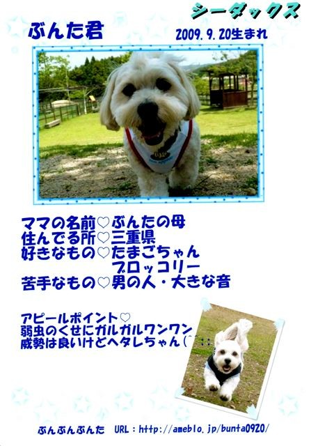 f:id:yasukazu01:20131021195614j:image