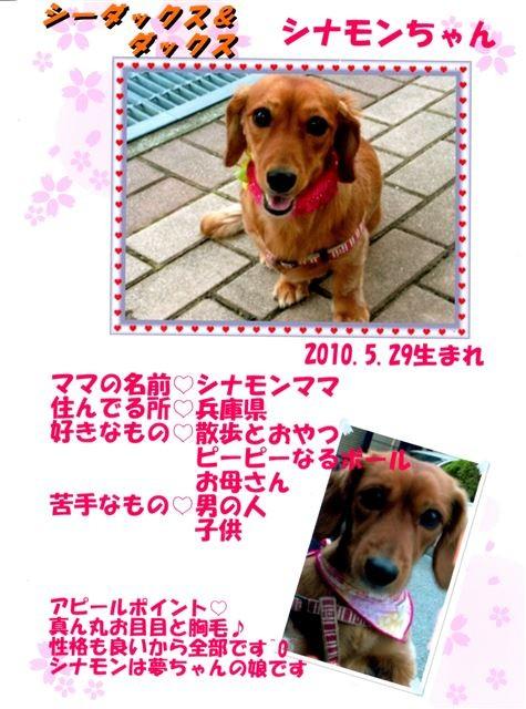 f:id:yasukazu01:20131021200127j:image