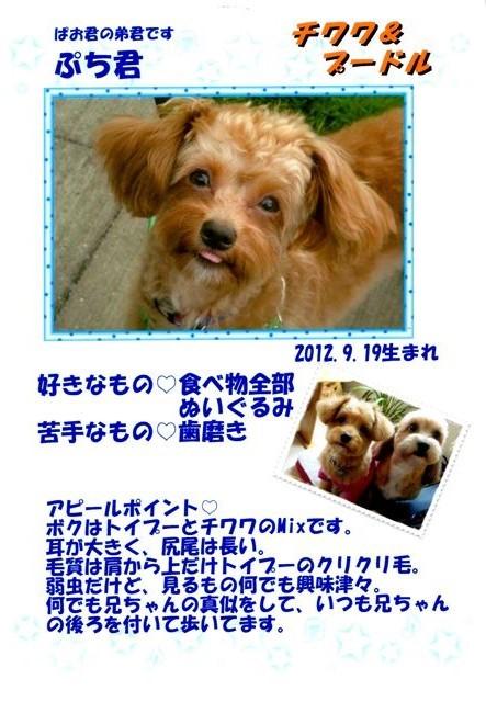 f:id:yasukazu01:20131021201609j:image