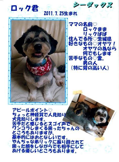 f:id:yasukazu01:20131021202128j:image
