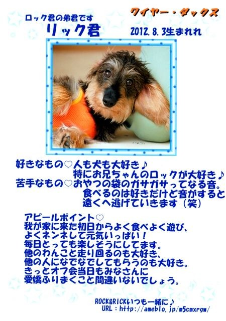 f:id:yasukazu01:20131021202139j:image
