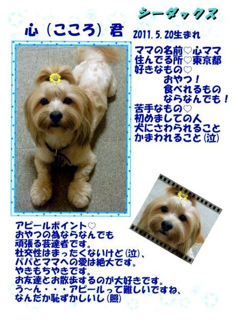 f:id:yasukazu01:20131021202323j:image