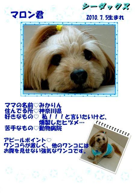 f:id:yasukazu01:20131021202542j:image