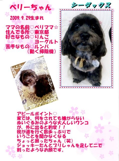 f:id:yasukazu01:20131021202650j:image