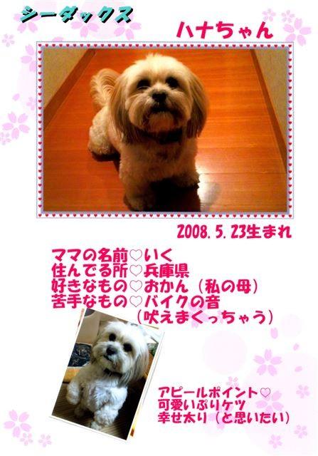 f:id:yasukazu01:20131021202903j:image