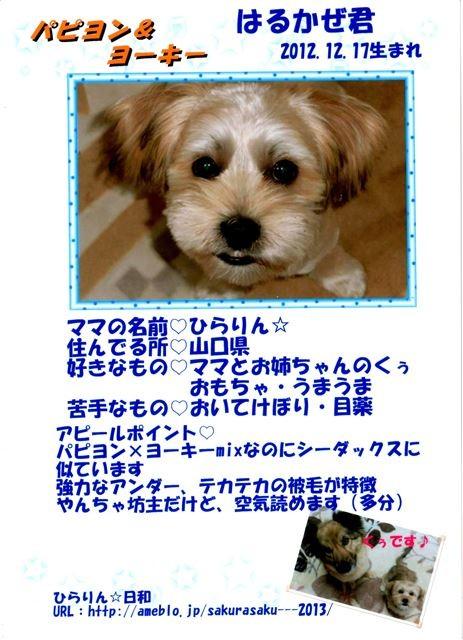 f:id:yasukazu01:20131021203116j:image