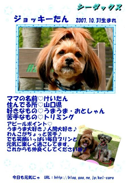 f:id:yasukazu01:20131021205143j:image