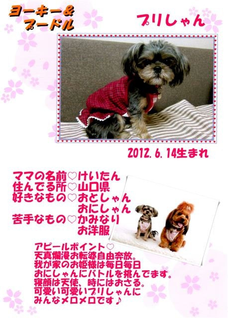 f:id:yasukazu01:20131021205155j:image