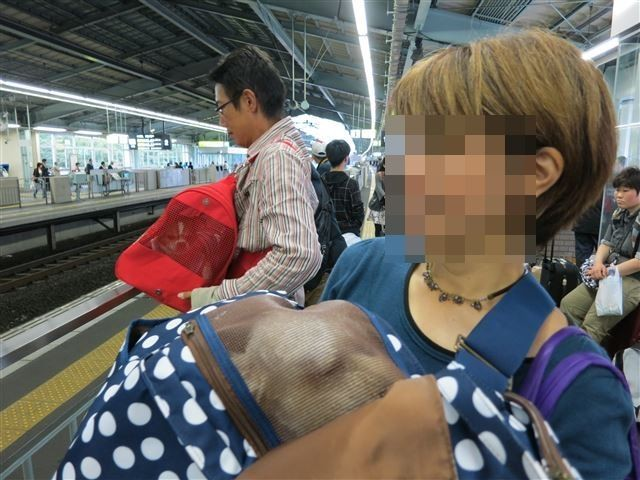 f:id:yasukazu01:20131023214148j:image